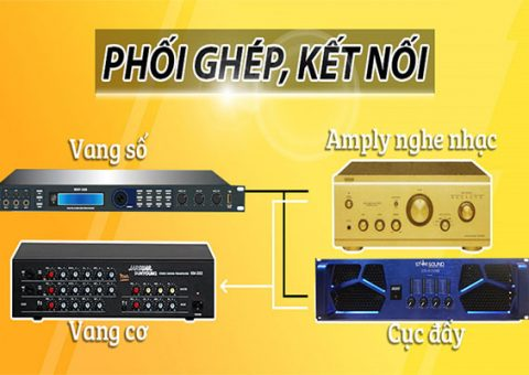 ket-noi-vang-so-va-vang-co-voi-amply-va-cuc-day-001